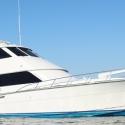 Armada Sport Fishing & Charter | Cabo San Lucas Image 1